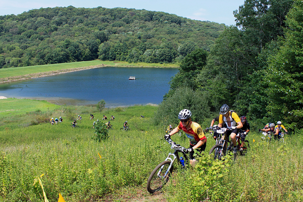 Mountain bikers ascending a hill during a race